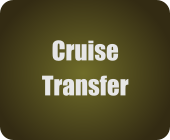 Cruise Transfer to Airport